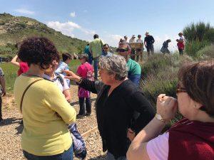 Santa Criz de Eslava sigue batiendo récords de visitantes